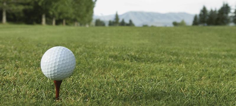 GolfPreviewDPlayersART