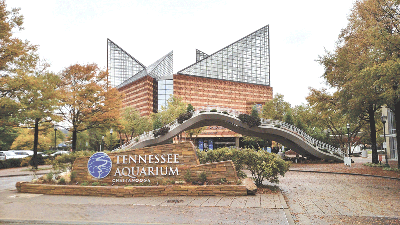 The country's largest freshwater aquarium