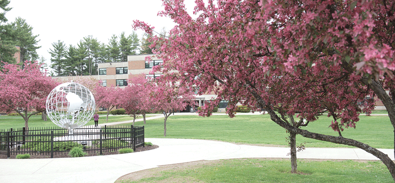 the state university